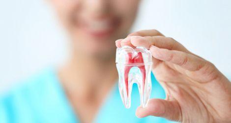 Endodontic Specialists