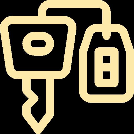 Auto Access Program